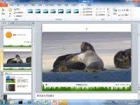 7.给PPT插入的视频添加封面和标题_PPT2010系列教程