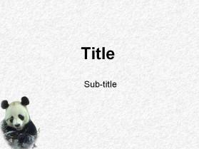 熊猫动物PPT模板