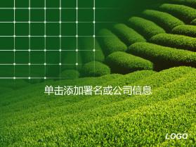 精美绿色环保PPT模板
