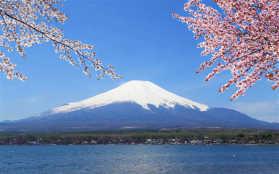 富士山樱花幻灯片背景图片