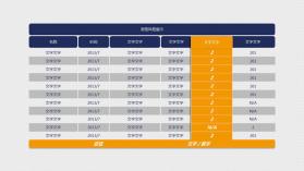 重点项目强调PPT表格模板