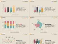 10页数据分析类型PPT图表